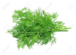 Fennel in Hindi