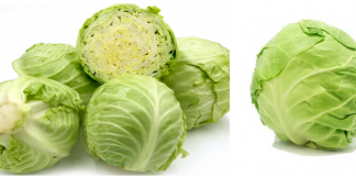 cabbage benefits in hindi
