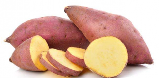 sweet potato benefits